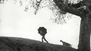 Calabria d'oggi: la Calabria nel 1961 raccontata in un documentario